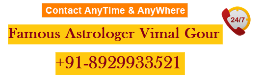 astrologer and numerologer